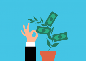 Money Plant Investment Cash Tree  - mohamed_hassan / Pixabay